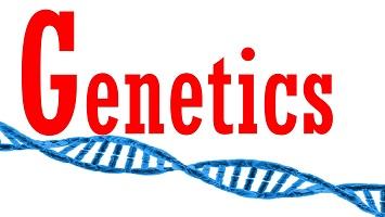 2. Biological Psych Genetics