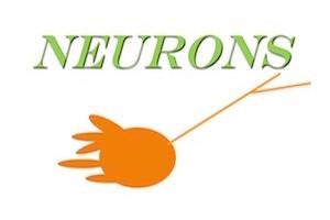 4. Neural Impulse