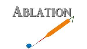 Ablation probe
