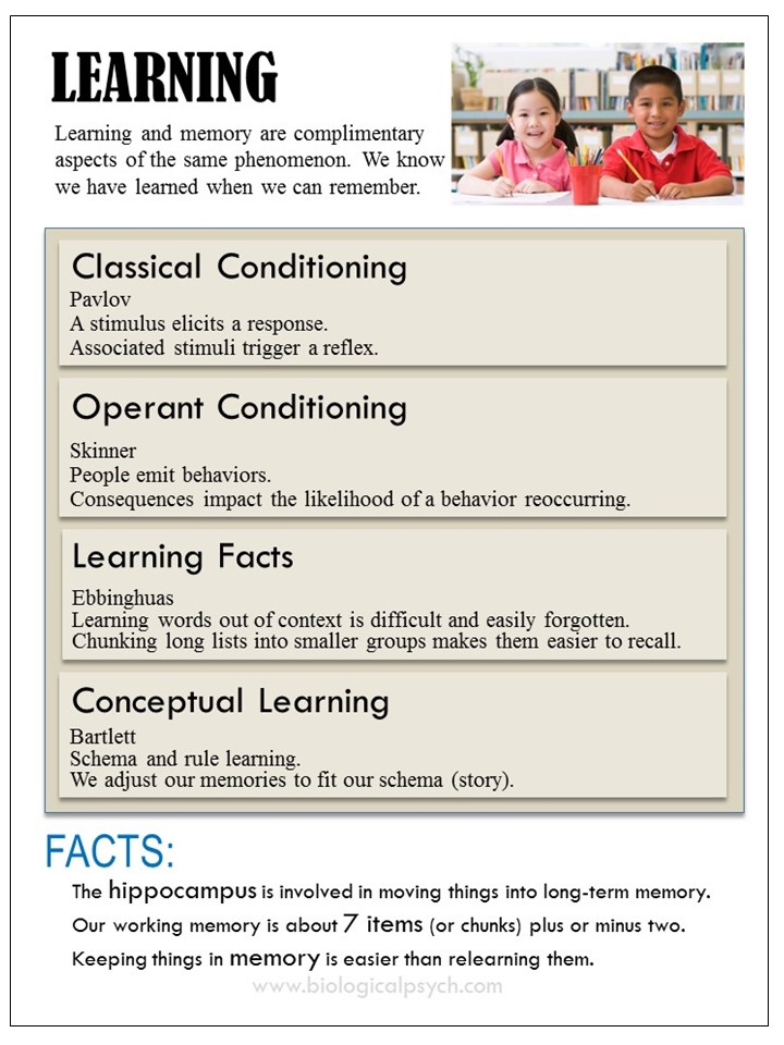 Infographic about Learning