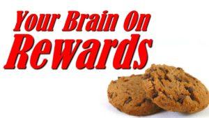 Your brain on rewards